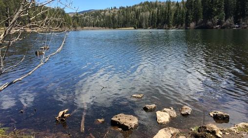 White mountain apache tribe game and fish for Apache lake fishing